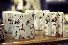 Mugs Flights of Fancy