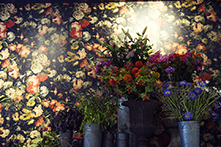 Midnight Garden wallpaer, flowers from Wild at Heart